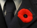 Titre original :    Description English: A remembrance poppy from Canada, worn on the lapel of a men's suit. In many Commonwealth countries, poppies are worn to commemorate soldiers who have died in war, with usage most common in the week leading up to Remembrance Day (and Anzac Day in Australia and New Zealand). The use of the poppy was inspired by the World War I poem In Flanders Fields, written by Canadian physician and Lieutenant Colonel John McCrae. Date 2 November 2004(2004-11-02), 15:01:25 Source Flickr Author hobvias sudoneighm Permission (Reusing this file) This image, which was originally posted to Flickr.com, was uploaded to Commons using Flickr upload bot on 11:53, 24 October 2007 (UTC) by Skeezix1000 (talk). On that date it was licensed under the license below. This file is licensed under the Creative Commons Attribution-Share Alike 2.0 Generic license. You are free: to share – to copy
